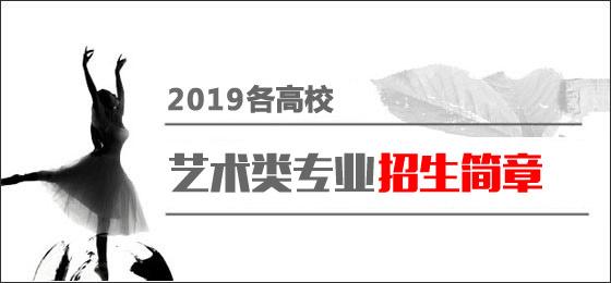 2019艺考简章